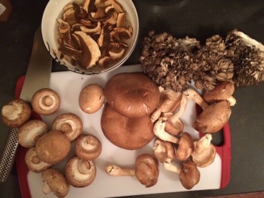 I will never understand people who don't love mushrooms